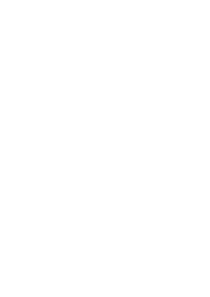 MIster Web